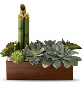 Full of stunning succulents, it's super-low-maintenance.