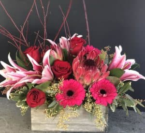 Share the love with your Valentine by sending some gorgeous Protea, lilies, gerbera daisies and roses!